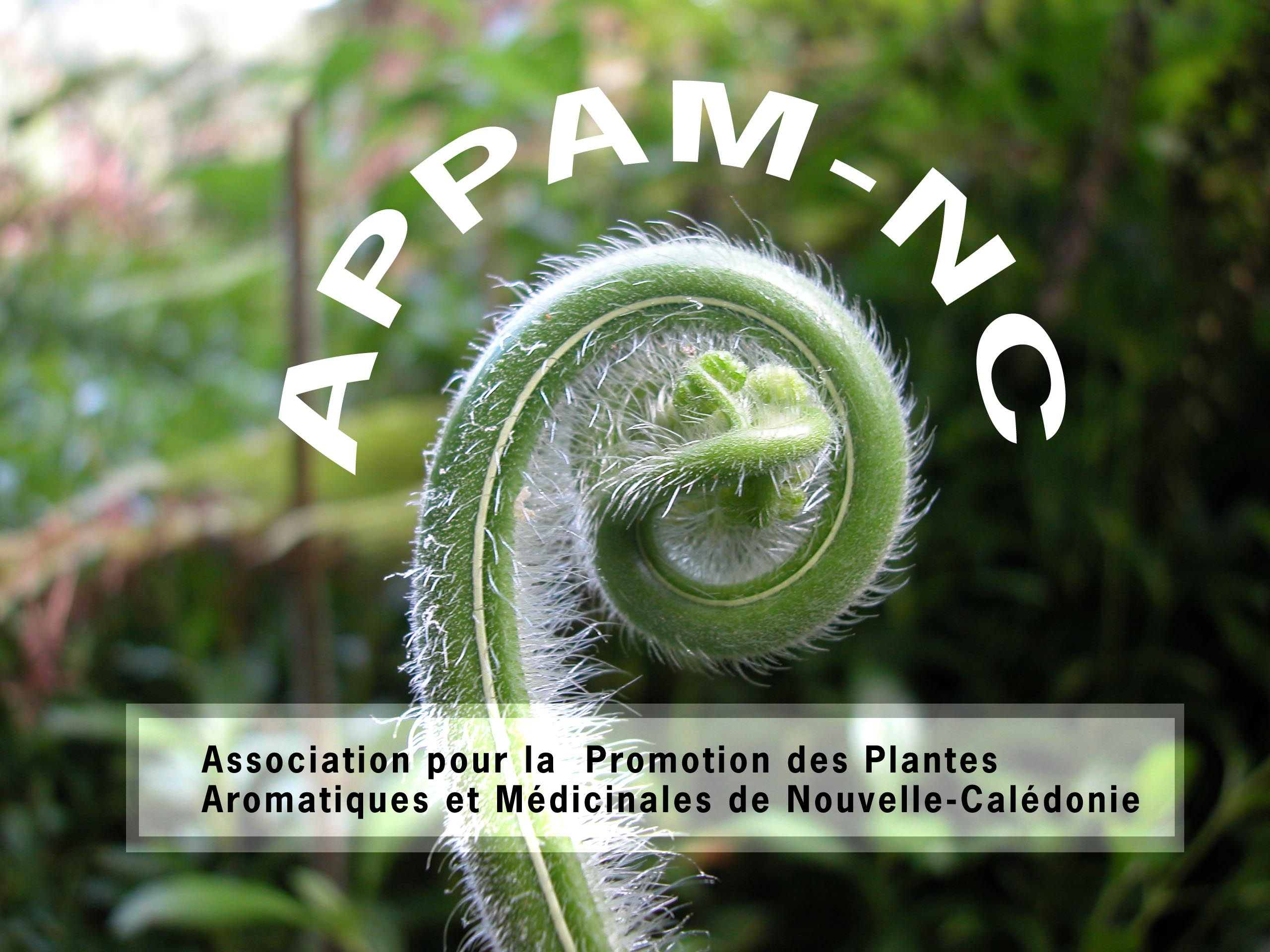Bienvenue sur le site de l'APPAM