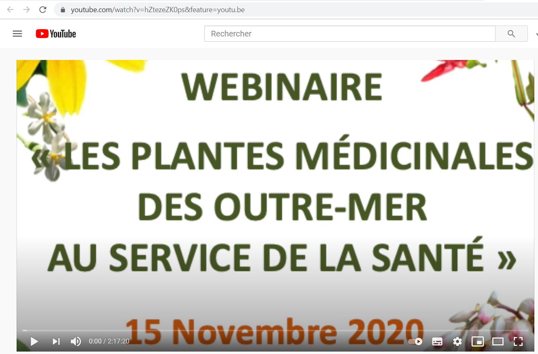 Le webinaire des plantes médicinales d'outre-mer est sur YouTube