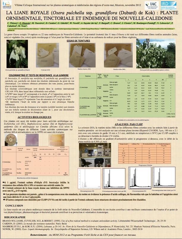 LA LIANE ROYALE (Oxera pulchella ssp. grandiflora (Dubard) de Kok)