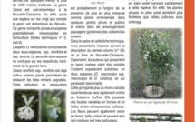 OXERA NERIIFOLIA subsp. NERIIFOLIA (Montrouz.) Beauvis.